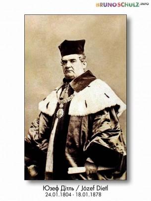 Galicyjski lekarz, polityk, profesor i rektor Uniwersytetu Jagiellońskiego, prezydent Krakowa (1866-1874). Urodził się w Podbużu, zmarł w Krakowie.